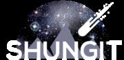 Shungit Blog